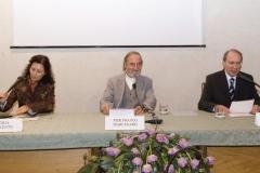 Vicenza (2009)