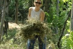 Projekte der natürlichen Landwirtschaft